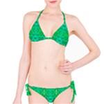 Sonata Emerald Classic Bikini Set