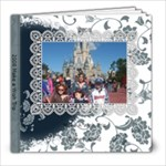 Our Disney Trip - 8x8 Photo Book (20 pages)