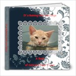 It s Raining Cats and Dogs - 8x8 Photo Book (20 pages)