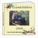Grandkids 2008 - 8x8 Photo Book (20 pages)