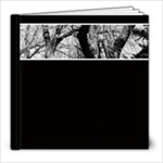 Milbank Cemetery - 8x8 Photo Book (20 pages)
