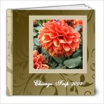 Elegant Brown and Cream Swirls Photo Book - 8x8 Photo Book (20 pages)