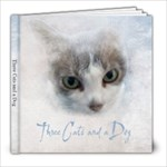 kitties - 8x8 Photo Book (20 pages)