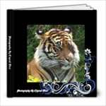 photography - 8x8 Photo Book (20 pages)