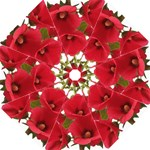 hollyhock - Folding Umbrella