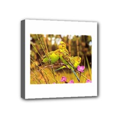 2-95-Animals-Wildlife-1024-028 Mini Canvas 4  x 4  (Stretched)
