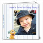 Owen s First Birthday - 8x8 Photo Book (20 pages)