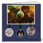 Starry Night - 20pg 12x12 Christmas Book - 12x12 Photo Book (20 pages)