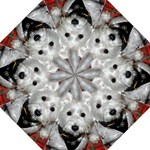 Westie Lover - Folding Umbrella
