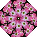 Pink Dogwood Umbrella - Folding Umbrella