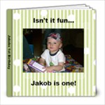 Jake s Birthday - 8x8 Photo Book (20 pages)