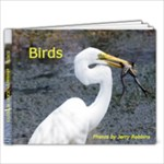 Birds 9 x 7  - 9x7 Photo Book (20 pages)