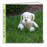 Bennett and Patches Go To The park - 8x8 Photo Book (30 pages)