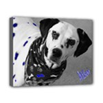 8x10 canvas animal art! - Canvas 10  x 8  (Stretched)