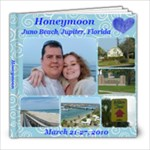 Hannah and Brandon - Honeymoon Album - 8x8 Photo Book (39 pages)