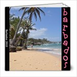 THEBadbados Book - 8x8 Photo Book (20 pages)