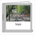 The Boys at Flamingoland - 8x8 Photo Book (20 pages)