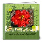 spring/summer photo book - 8x8 Photo Book (20 pages)