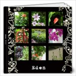 Eden 2010  - 12x12 Photo Book (20 pages)
