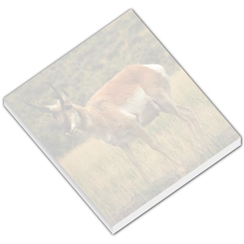 Pronghorn Memo Pad By Brittney   Small Memo Pads   Vwxx7lm1yzu7   Www Artscow Com