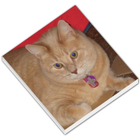 My Thomas By Mary Berger   Small Memo Pads   Kkd1c82hz8py   Www Artscow Com