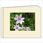 Beige frameless art book - 9x7 Photo Book (20 pages)