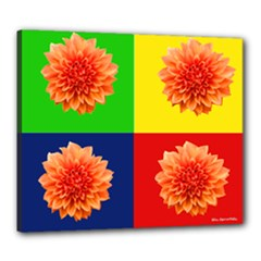 Carla Canvas - Canvas 24  x 20  (Stretched)