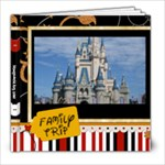DisneyWorld 2010 - 8x8 Photo Book (39 pages)