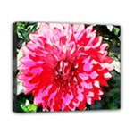 flower_canvas - Canvas 10  x 8  (Stretched)
