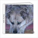 pics for julie - 6x6 Photo Book (20 pages)
