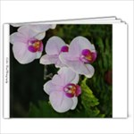 gift - 9x7 Photo Book (20 pages)