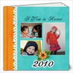 12 x12 Year in Review 2010 - 12x12 Photo Book (30 pages)