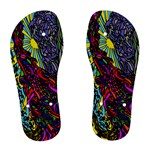 Rainbow Bridge - Women s Flip Flops