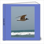 Vacation2010 - 8x8 Photo Book (39 pages)