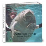 manatees - 8x8 Photo Book (20 pages)