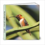 Huntington Library - 6x6 Photo Book (20 pages)