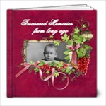 Treasured Memories 8x8 20 pg - 8x8 Photo Book (20 pages)