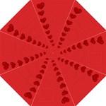 Sweet love umbrella - Folding Umbrella