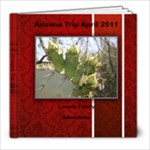 Arizona Trip - 8x8 Photo Book (20 pages)