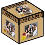 Friends 12  Photo Storage Stool - Storage Stool 12