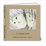 a closer look - 6x6 Photo Book (20 pages)