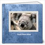 family book 1 - 12x12 Photo Book (20 pages)