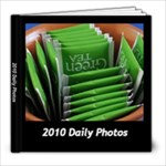 Project 365 2010 - 8x8 Photo Book (60 pages)