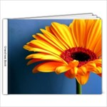 grandmas book - 9x7 Photo Book (20 pages)