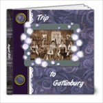 Trip to Gatlinburg - 8x8 Photo Book (30 pages)