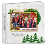 2011 Disney Xmas - 8x8 Deluxe Photo Book (20 pages)