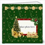 Chrissy 12x12 20 pages - 12x12 Photo Book (20 pages)
