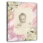 Baby t - Canvas 20  x 16  (Stretched)
