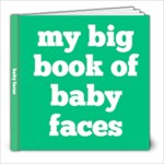 Baby Book Hatch - 8x8 Photo Book (20 pages)