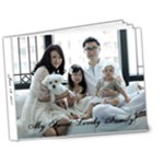 A Sweet Lovely Family 2011 - 7x5 Deluxe Photo Book (20 pages)